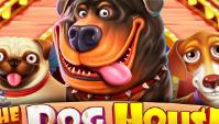 Игровой автомат The Dog House