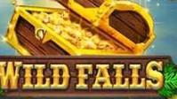 Игровой автомат Wild Falls