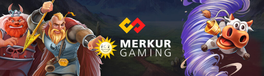 Provider-Merkur_Blueprint_1